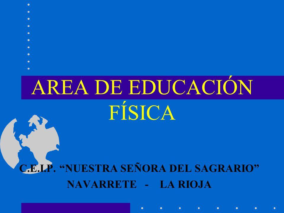 Area de educaci n f sica ppt descargar for Area933