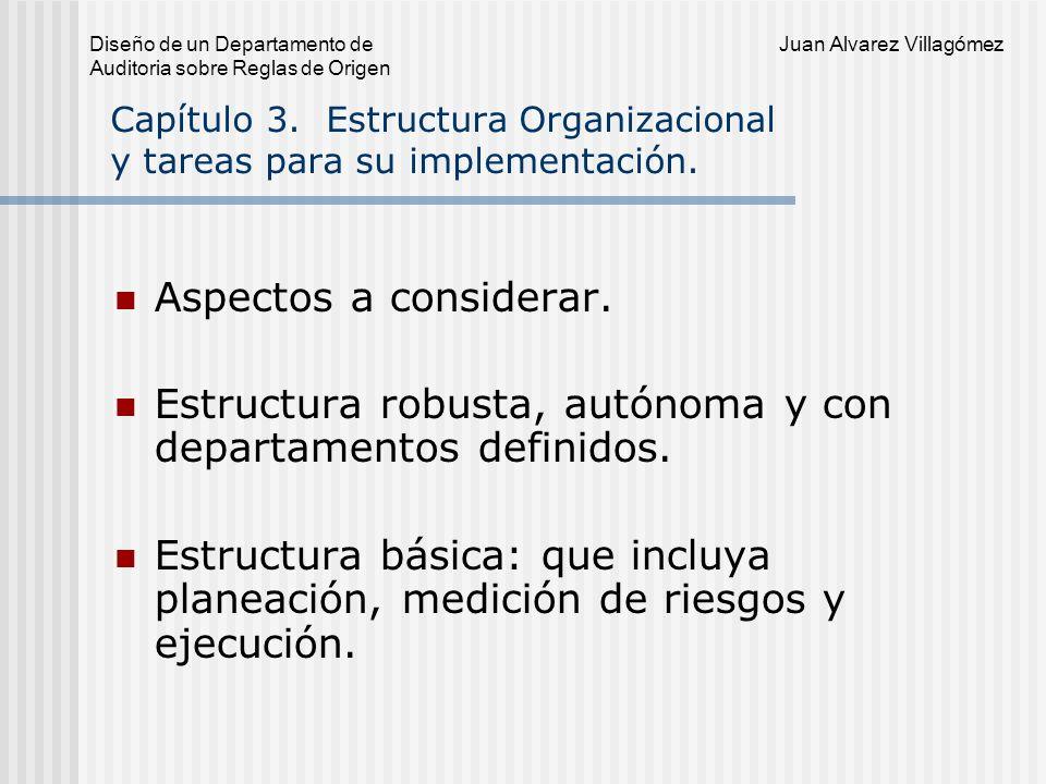 Capítulo 3. Estructura Organizacional y tareas para su implementación.