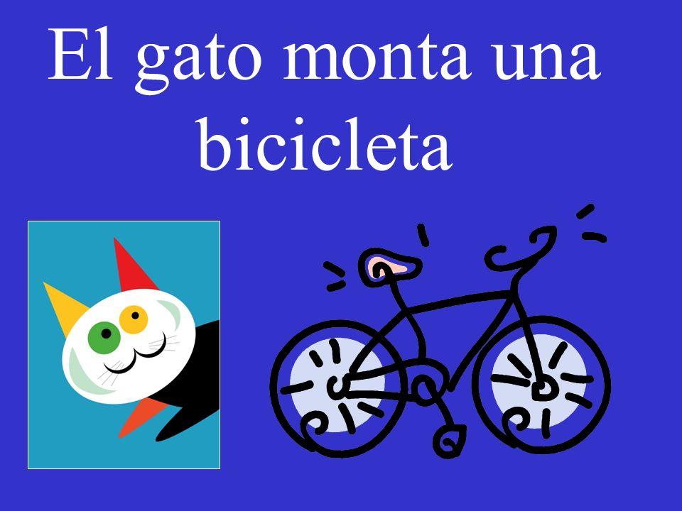 El gato monta una bicicleta