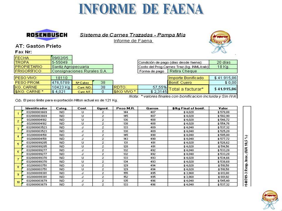 INFORME DE FAENA