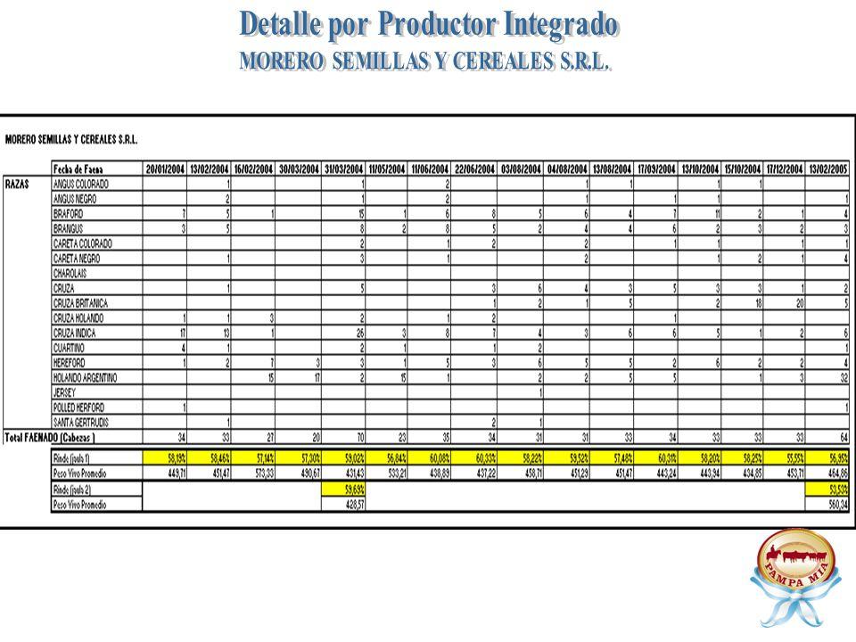 Detalle por Productor Integrado MORERO SEMILLAS Y CEREALES S.R.L.