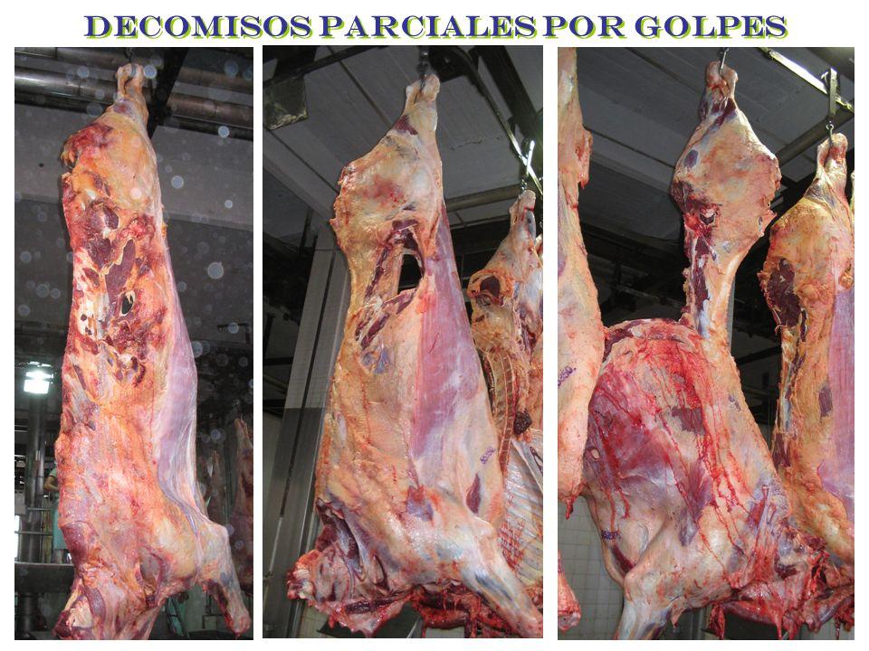 DECOMISOS PARCIALES POR GOLPES