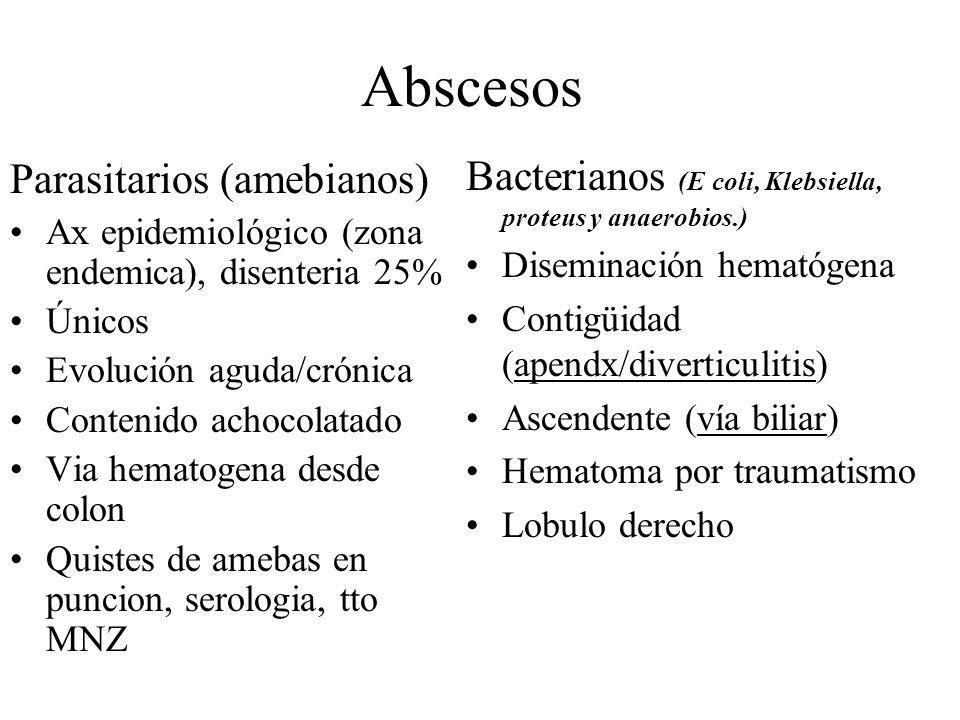 Abscesos Bacterianos (E coli, Klebsiella, proteus y anaerobios.)