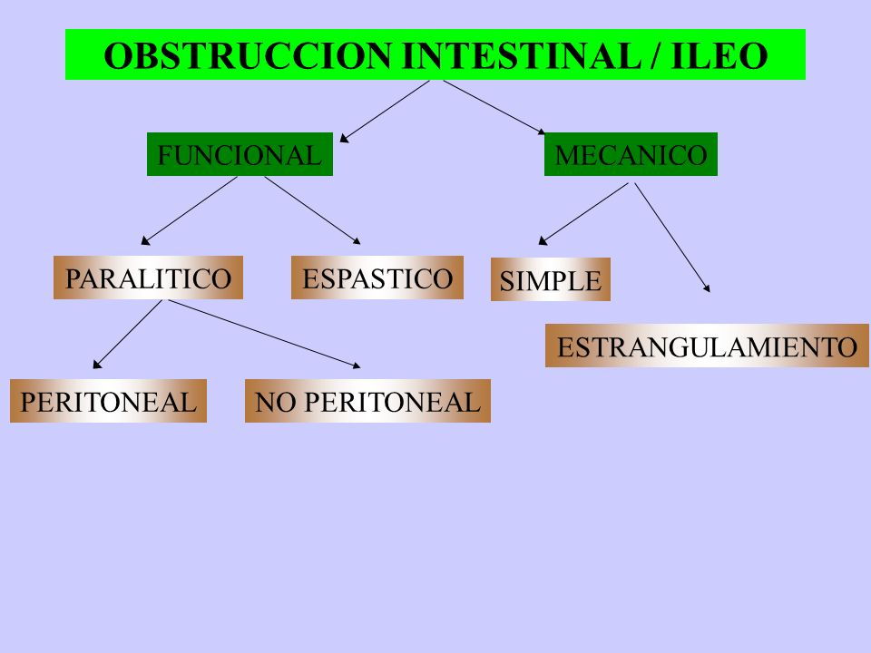 OBSTRUCCION INTESTINAL / ILEO