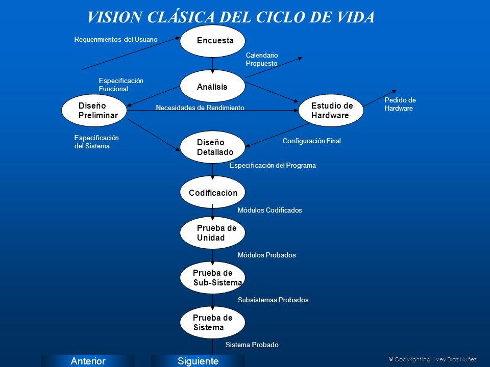VISION CLÁSICA DEL CICLO DE VIDA