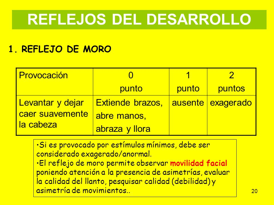 REFLEJOS DEL DESARROLLO