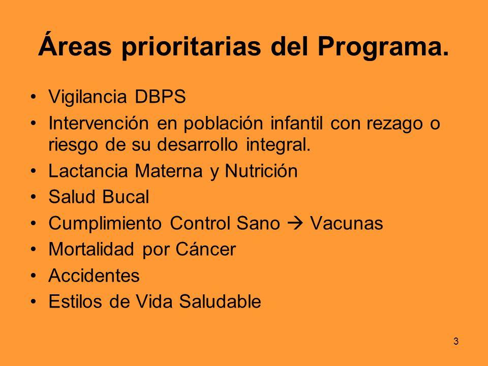 Áreas prioritarias del Programa.