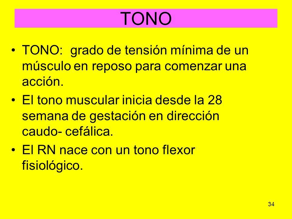 TONO TONO: grado de tensión mínima de un músculo en reposo para comenzar una acción.