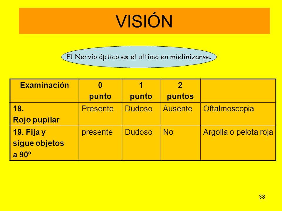 El Nervio óptico es el ultimo en mielinizarse.