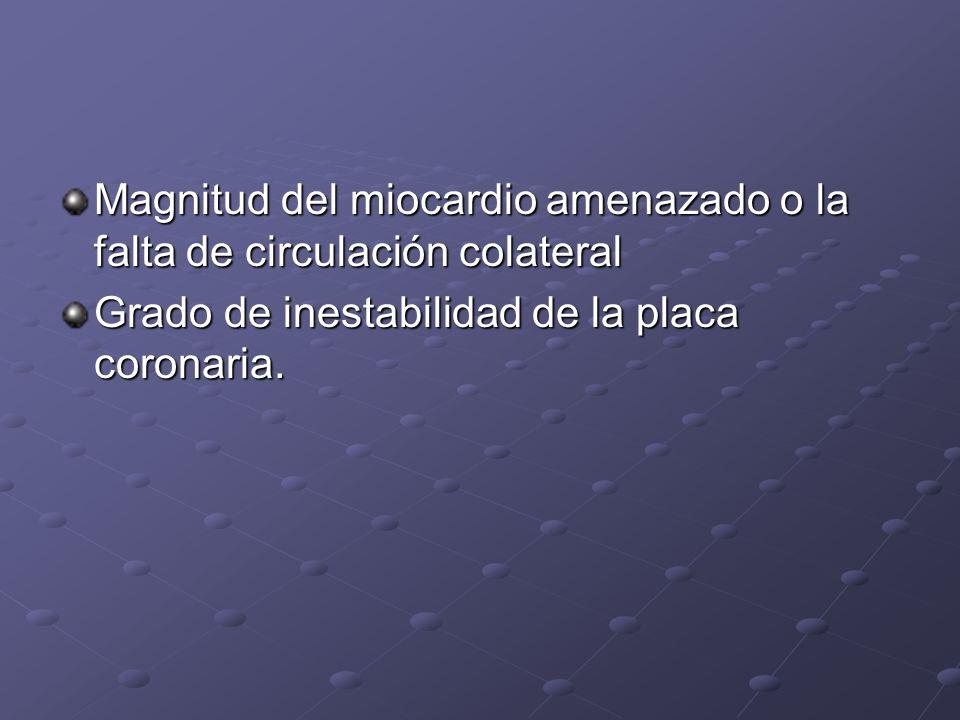 Magnitud del miocardio amenazado o la falta de circulación colateral