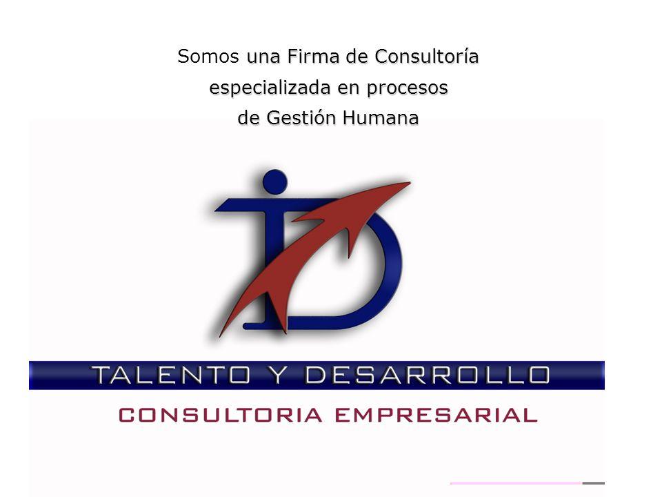 Somos una Firma de Consultoría especializada en procesos