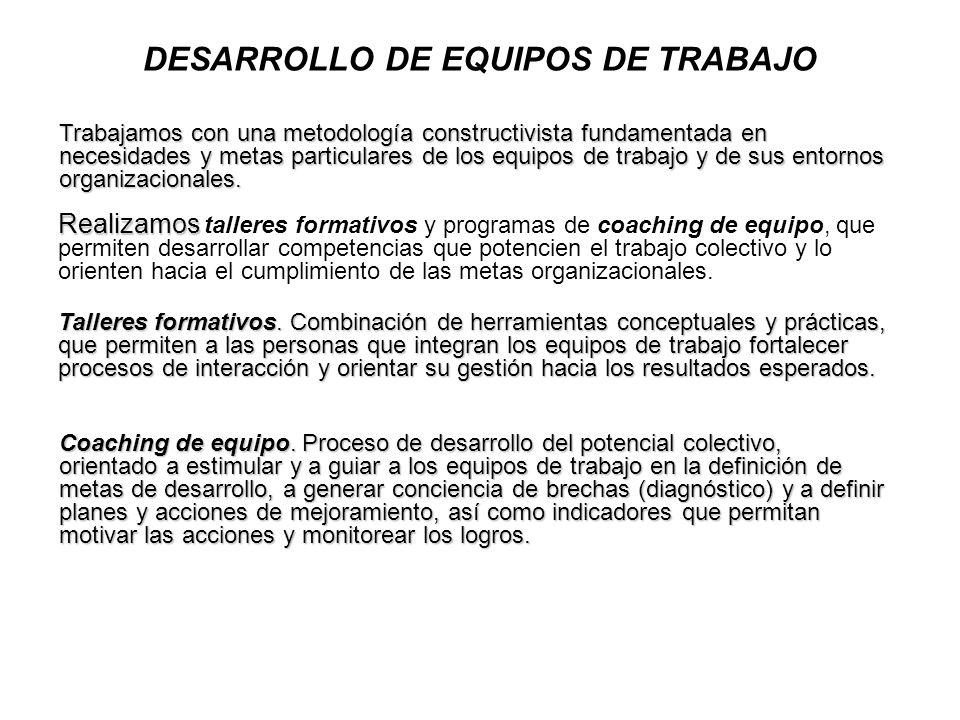 DESARROLLO DE EQUIPOS DE TRABAJO