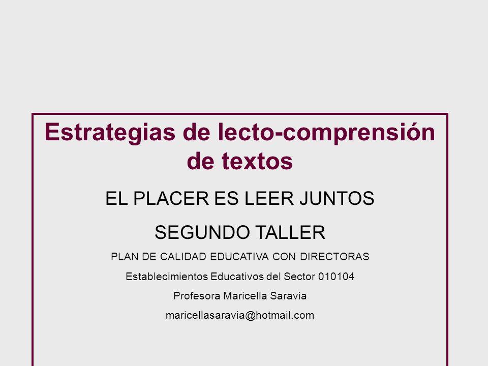 Estrategias de lecto-comprensión de textos