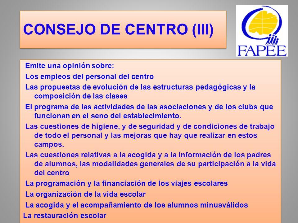 CONSEJO DE CENTRO (III)