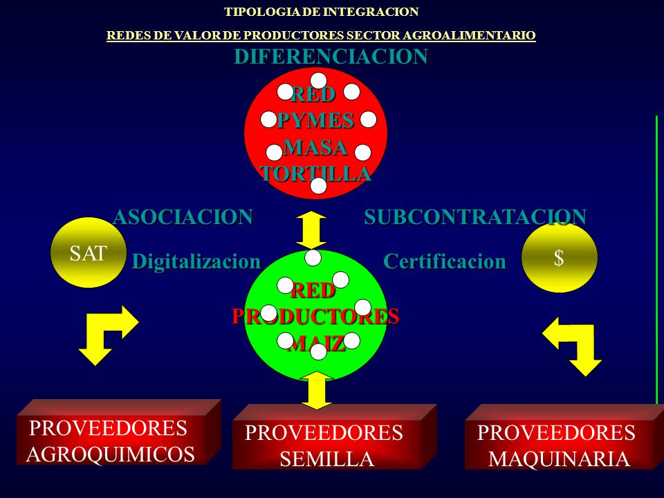RED PYMES MASA TORTILLA RED PRODUCTORES MAIZ