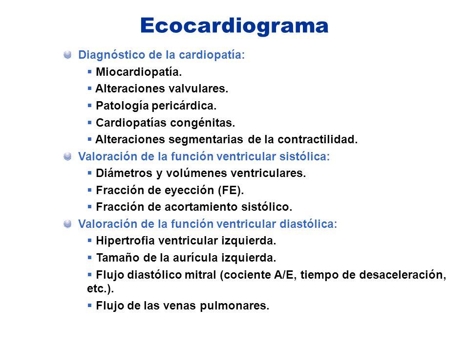 Ecocardiograma Diagnóstico de la cardiopatía: Miocardiopatía.