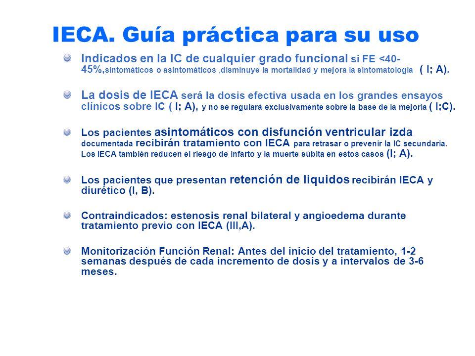 IECA. Guía práctica para su uso
