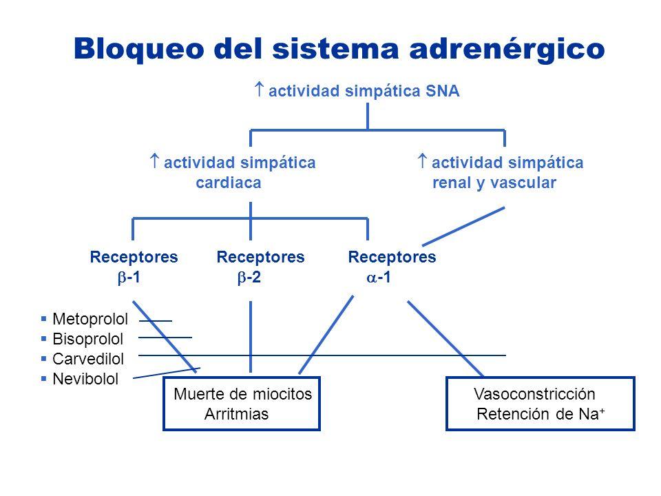 Bloqueo del sistema adrenérgico