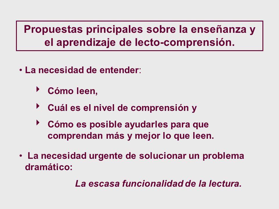 Propuestas principales sobre la enseñanza y el aprendizaje de lecto-comprensión.
