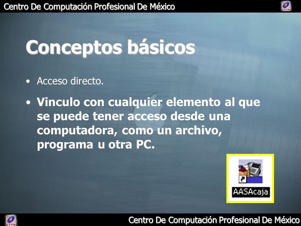 Conceptos básicos Acceso directo.