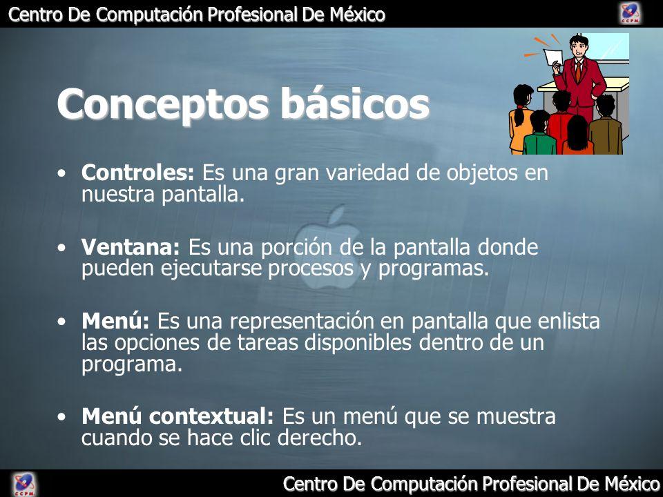 Conceptos básicos Controles: Es una gran variedad de objetos en nuestra pantalla.