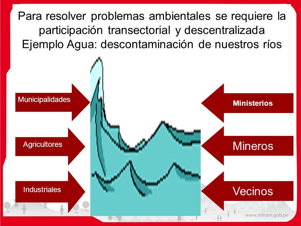 Para resolver problemas ambientales se requiere la participación transectorial y descentralizada Ejemplo Agua: descontaminación de nuestros ríos