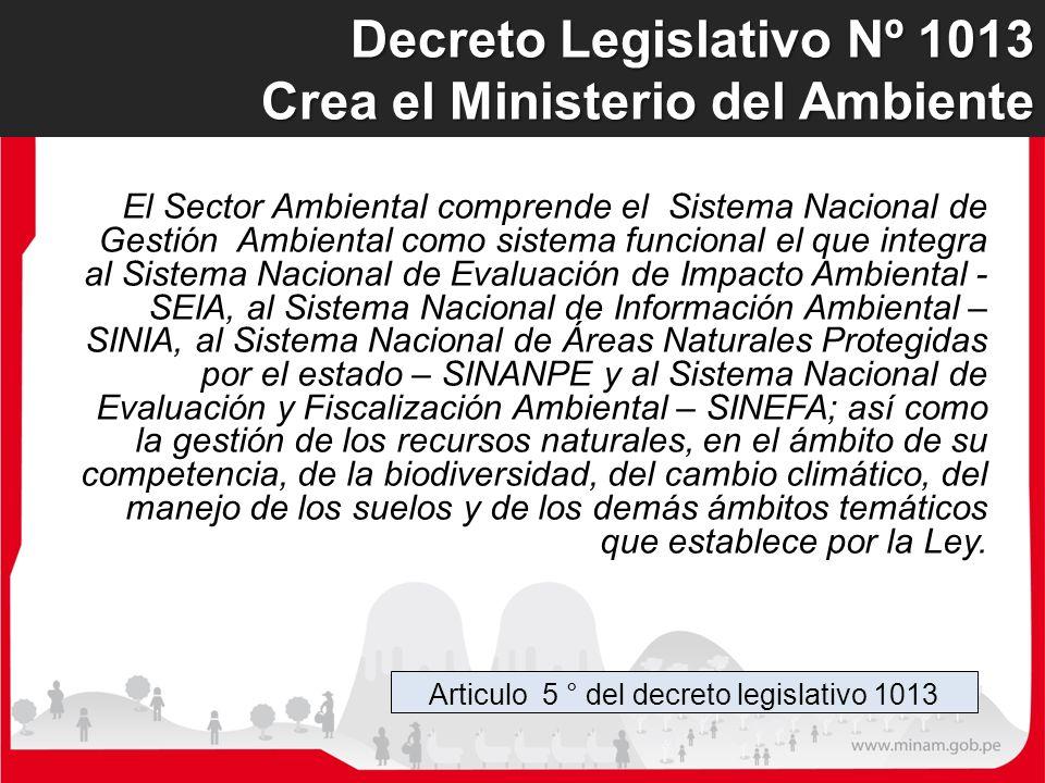 Articulo 5 ° del decreto legislativo 1013