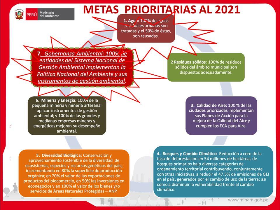 METAS PRIORITARIAS AL 2021 : :