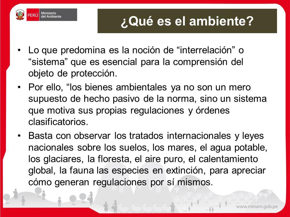 ¿Qué es el ambiente Lo que predomina es la noción de interrelación o sistema que es esencial para la comprensión del objeto de protección.