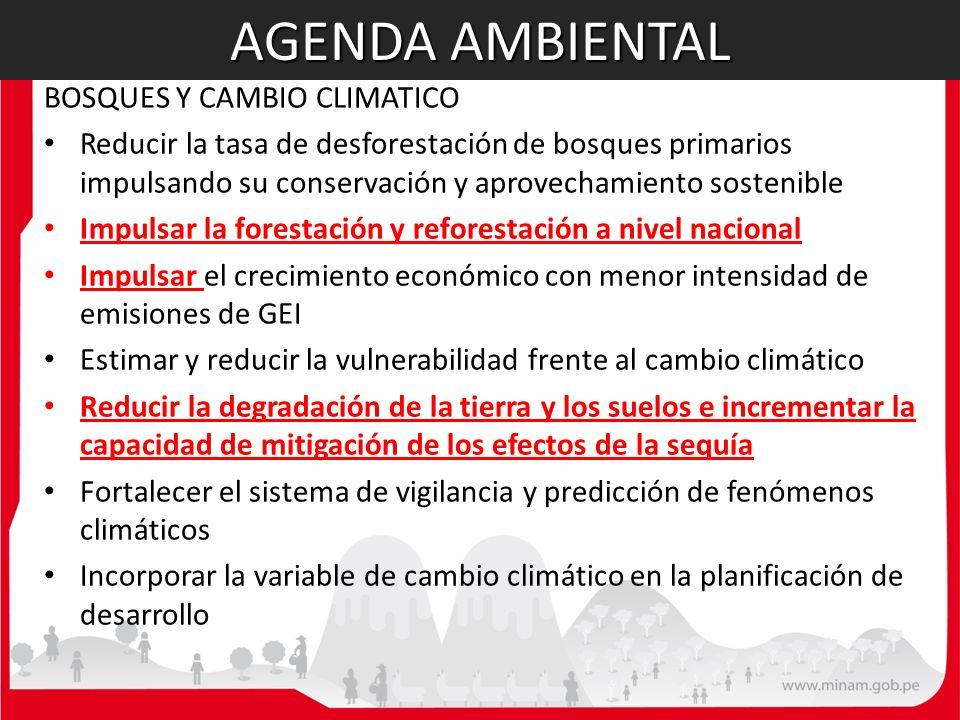 AGENDA AMBIENTAL BOSQUES Y CAMBIO CLIMATICO