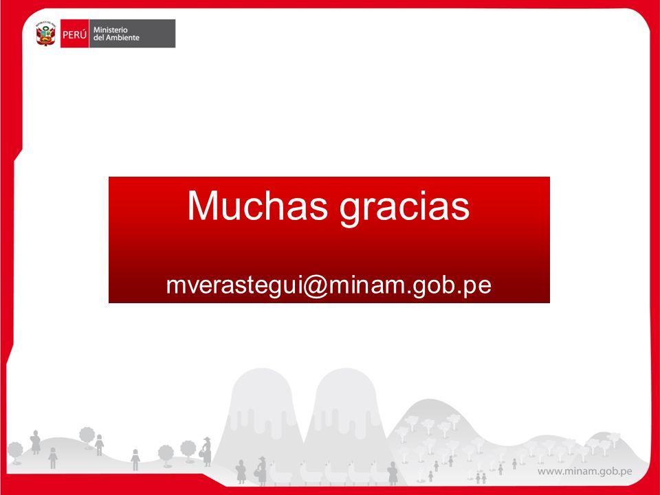 Muchas gracias mverastegui@minam.gob.pe 35