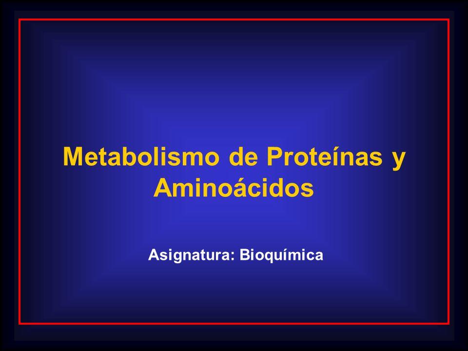 Metabolismo de Proteínas y Asignatura: Bioquímica