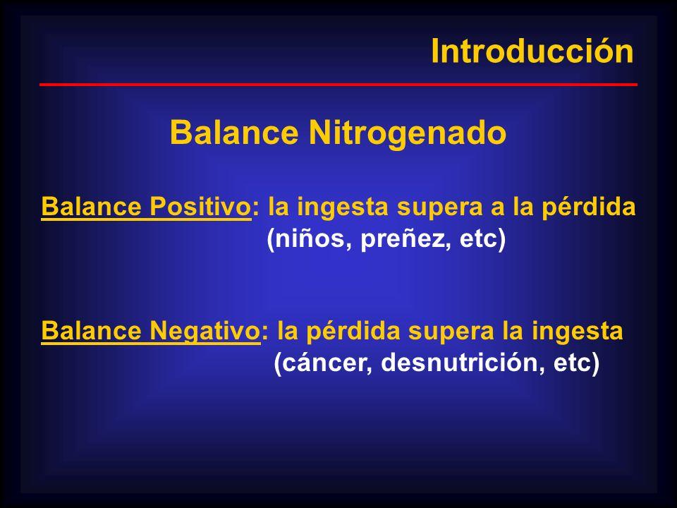 Introducción Balance Nitrogenado