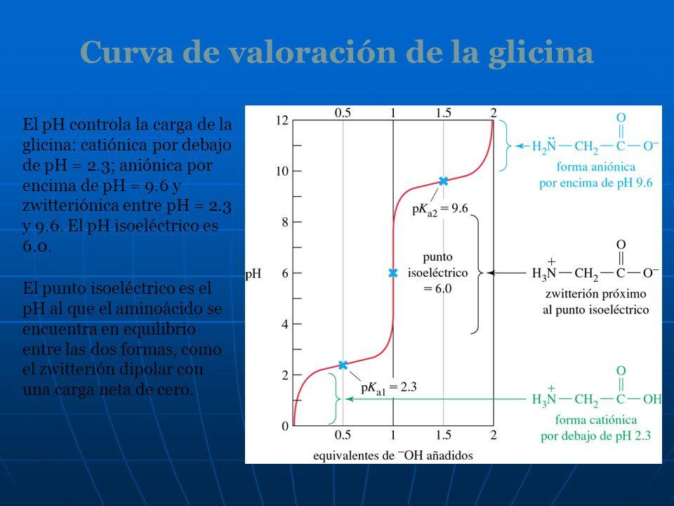 Curva de valoración de la glicina