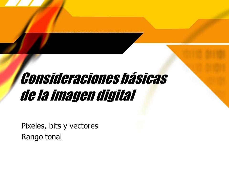 Consideraciones básicas de la imagen digital
