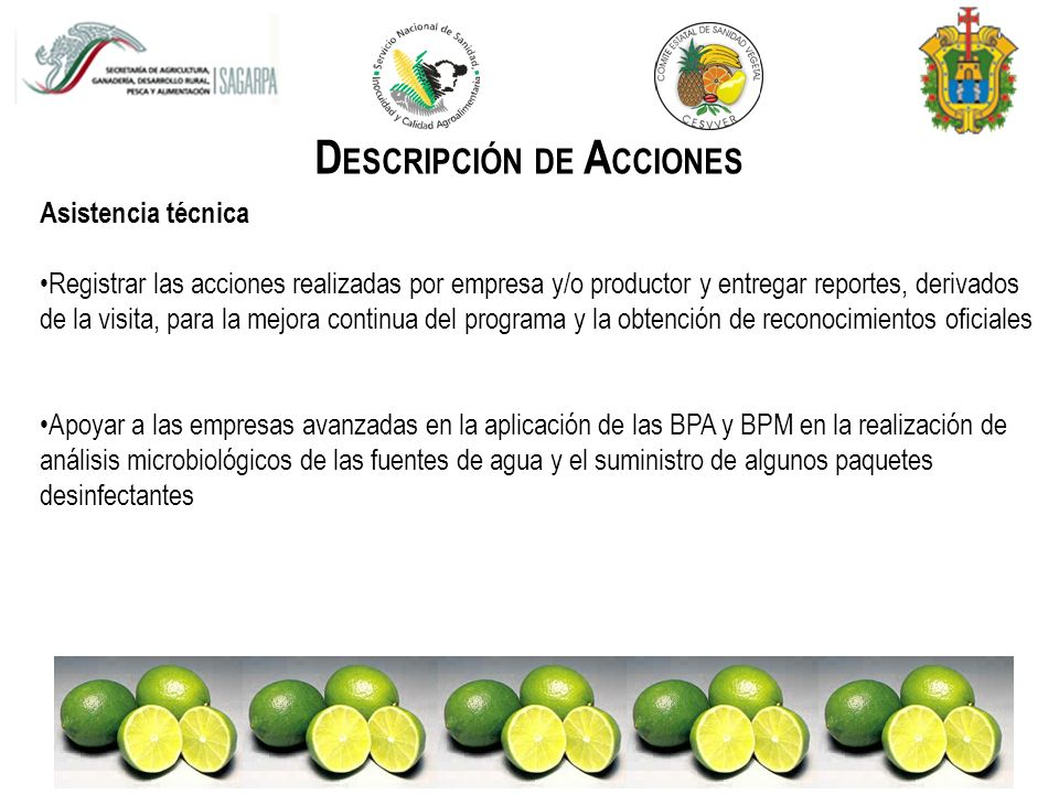 DESCRIPCIÓN DE ACCIONES