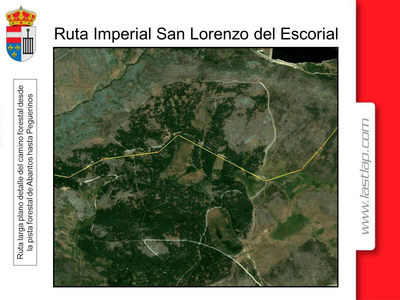 Ruta larga plano detalle del camino forestal desde la pista forestal de Abantos hasta Peguerinos