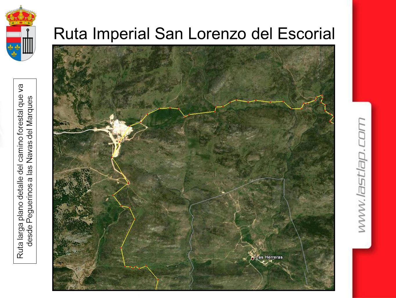 Ruta larga plano detalle del camino forestal que va desde Peguerinos a las Navas del Marques