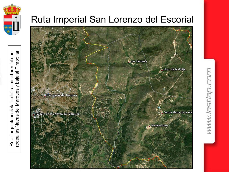 Ruta larga plano detalle del camino forestal que rodea las Navas del Marques y baja al Pimpollar