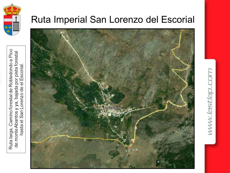 Ruta larga, Camino forestal de Robledondo a Pico de monte Abantos y ya, bajada por pista forestal hasta el San Lorenzo de el Escorial.