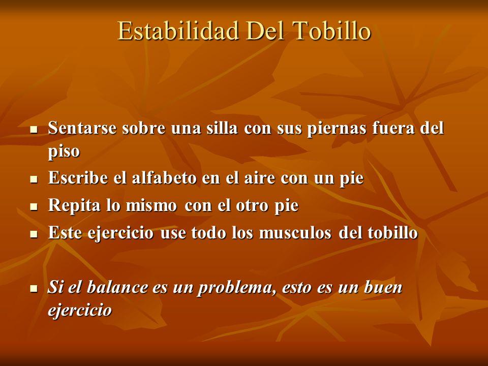 Estabilidad Del Tobillo