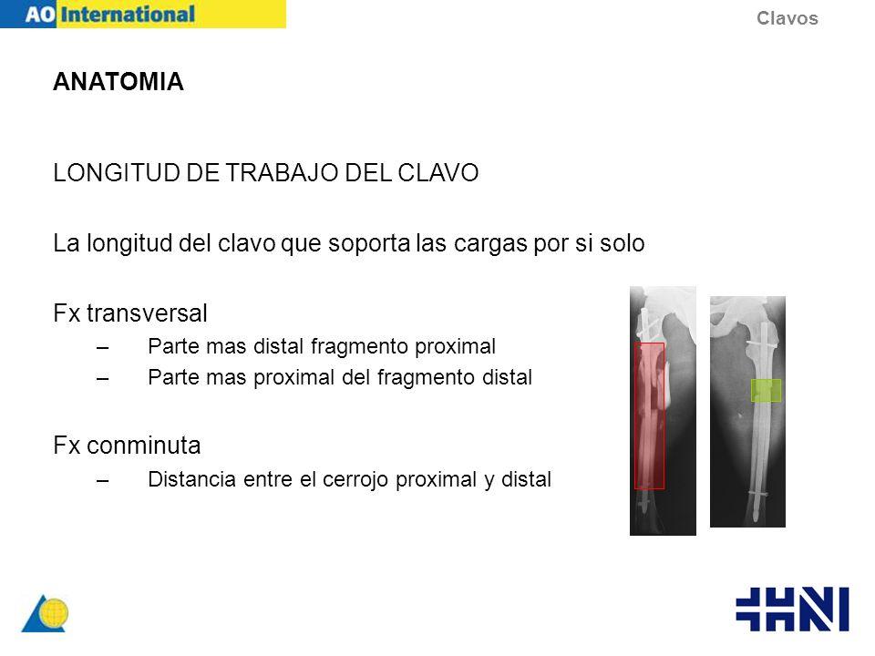 LONGITUD DE TRABAJO DEL CLAVO