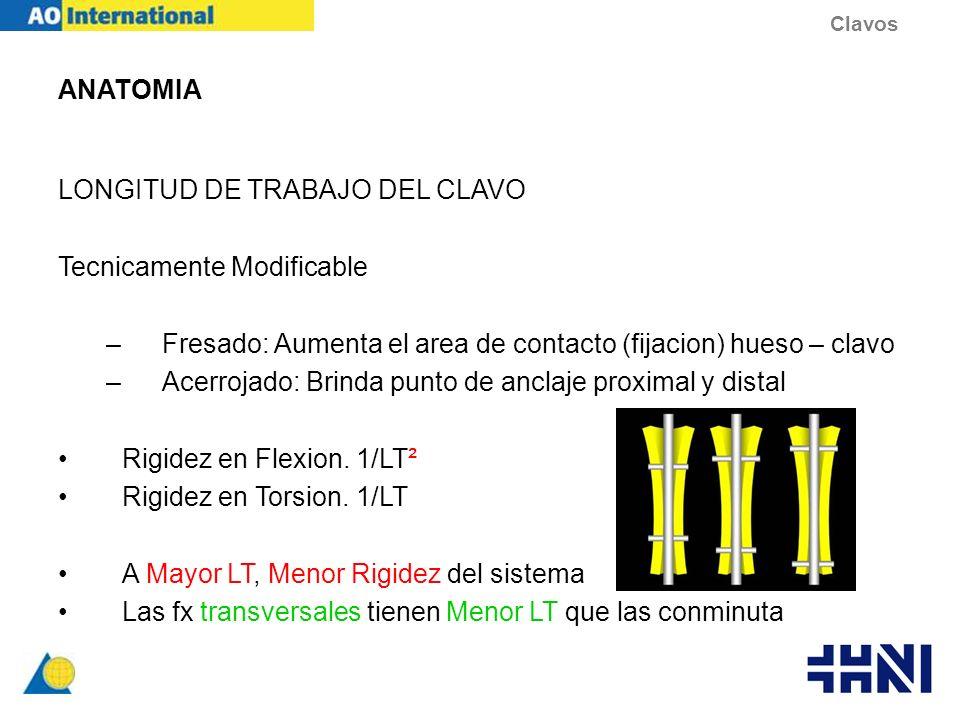 LONGITUD DE TRABAJO DEL CLAVO Tecnicamente Modificable