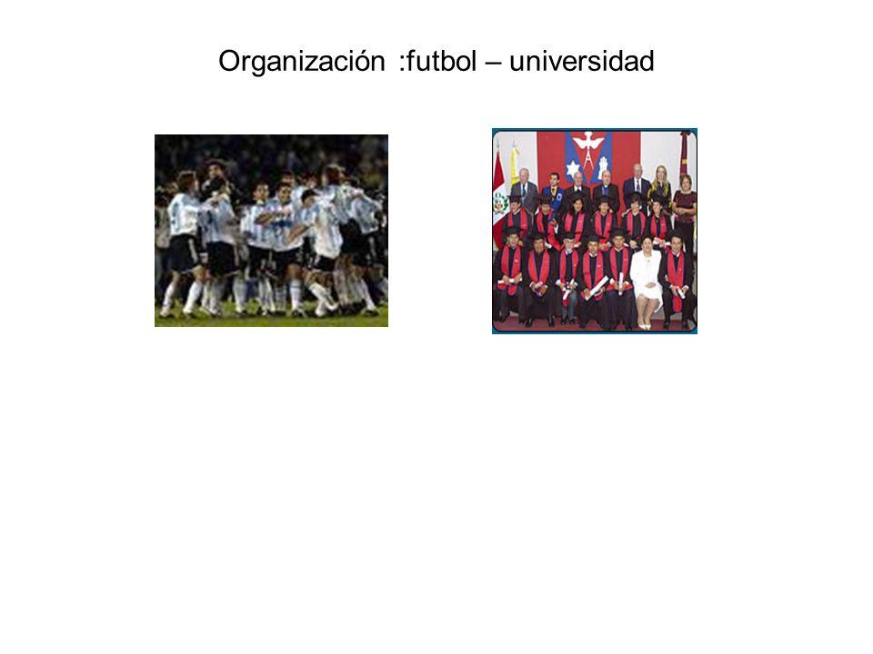 Organización :futbol – universidad