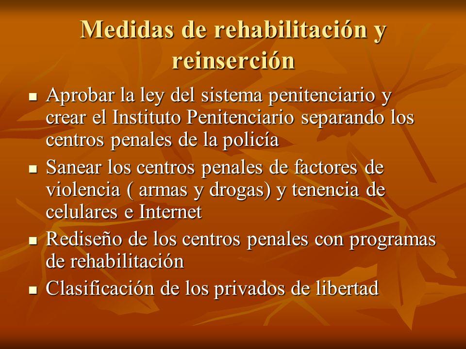 Medidas de rehabilitación y reinserción