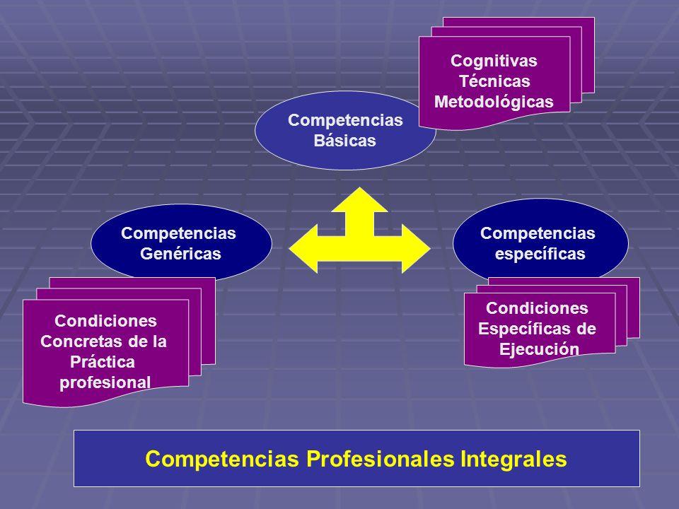 Competencias Profesionales Integrales