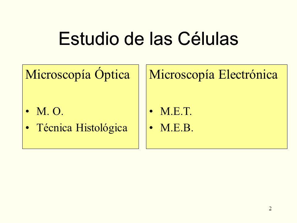 Estudio de las Células Estudio de las Células Microscopía Óptica