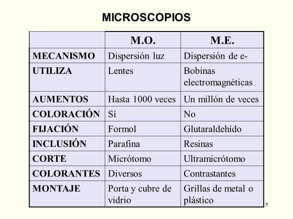 MICROSCOPIOS M.O. M.E. MECANISMO Dispersión luz Dispersión de e-