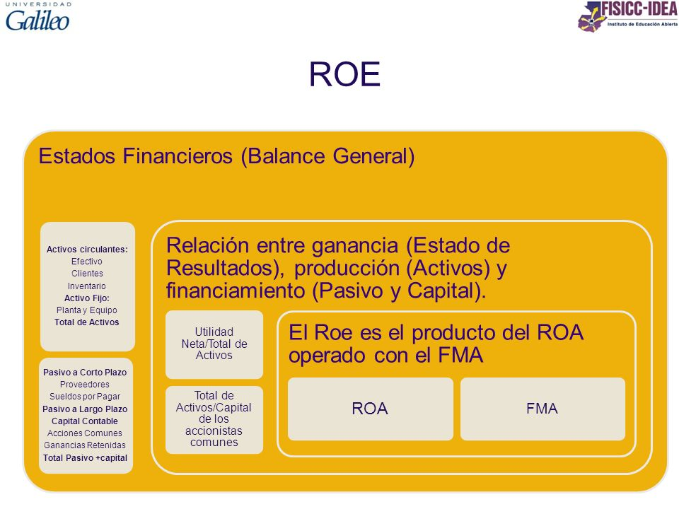 ROE Estados Financieros (Balance General)
