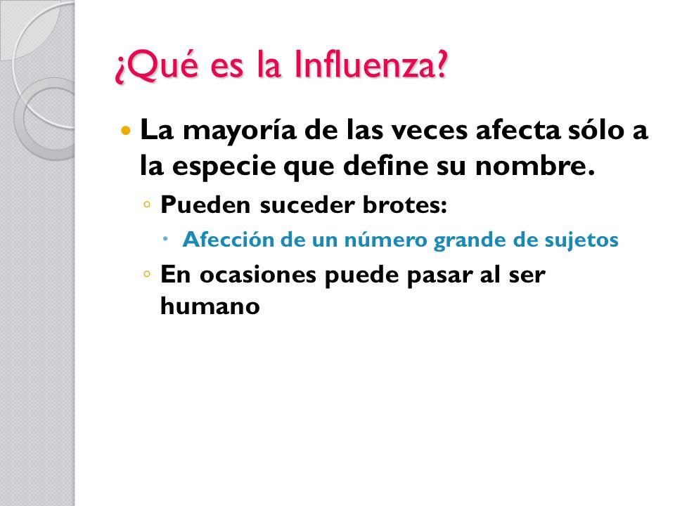¿Qué es la Influenza La mayoría de las veces afecta sólo a la especie que define su nombre. Pueden suceder brotes: